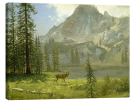 Lienzo  Call of the Wild - Albert Bierstadt