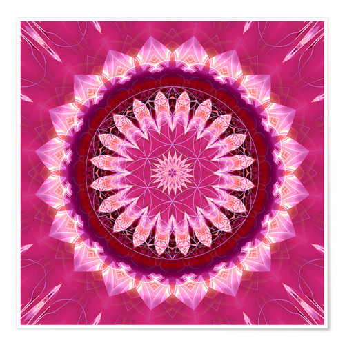 Póster Mandala pinkblossom with flower of life