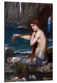 Cuadro de aluminio  La sirena - John William Waterhouse