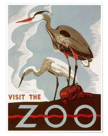 Póster Visit the Zoo