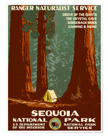 Póster  Sequoia National Park - Travel Collection