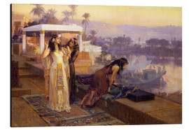 Aluminio-Dibond  Cleopatra on the terraces of philae - Frederick Arthur Bridgman