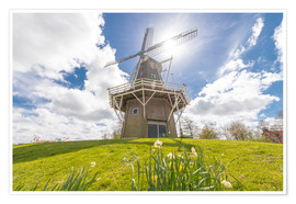 Póster Windmill in the sun