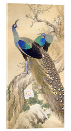 Imao Keinen - Two peacocks in spring