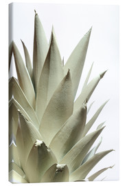 Lienzo  White pineapple - Neal Grundy