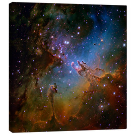 Lienzo  Eagle Nebula, optical image - Robert Gendler