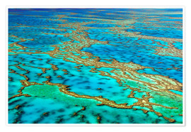 Póster Great Barrier Reef, Australia