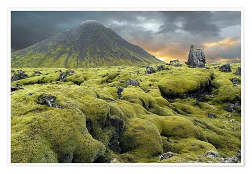 Póster Moss-covered lava field, Iceland