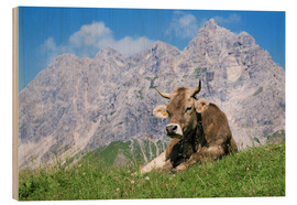 Madera  Cow on a mountain meadow - Bjorn Svensson