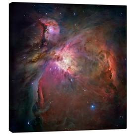 Lienzo  Orion nebula (M42 and M43) - NASA