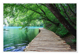 Póster Plitvice Lakes National Park Boardwalk