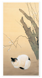 Póster  Cat and plum blossoms - Hishida Shunso