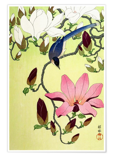 Póster Magpie with Pink and White Magnolia Blossoms