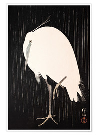Póster  White Crane in the rain - Ohara Koson