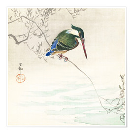 Póster  The kingfisher - Ohara Koson