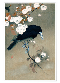 Póster Crow and blossom