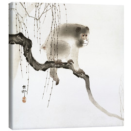 Lienzo  Japanese macaque on a tree - Ohara Koson