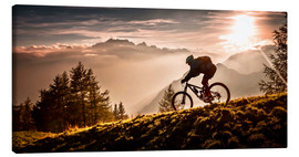 Lienzo  Golden hour biking - Sandi Bertoncelj