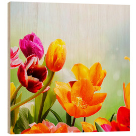 Cuadro de madera  Tulips with Water Drops - Lichtspielart