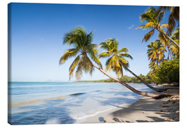 Lienzo  Famous Les Salines tropical beach with palm trees, Martinique, Caribbean - Matteo Colombo