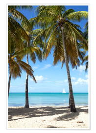 Póster  Palm beach with sailboat, Martinique - Matteo Colombo