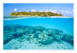 Póster  Reef and tropical island, Maldives - Matteo Colombo