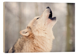 Cuadro de madera  Wolf howling in the forest - Louise Murray