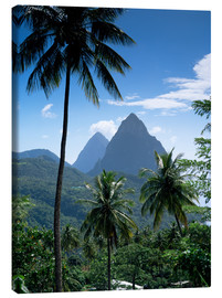 Lienzo  The Pitons, St Lucia - John Miller