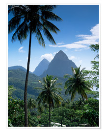 Póster  The Pitons, St Lucia - John Miller