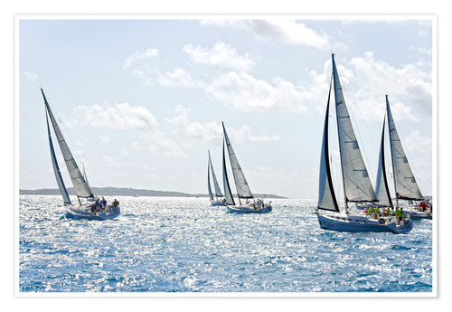 Póster Sailboat regattas