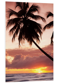 Forex  Tropical sunset, Bridgetown, Barbados, West Indies, Caribbean, Central America - Angelo Cavalli