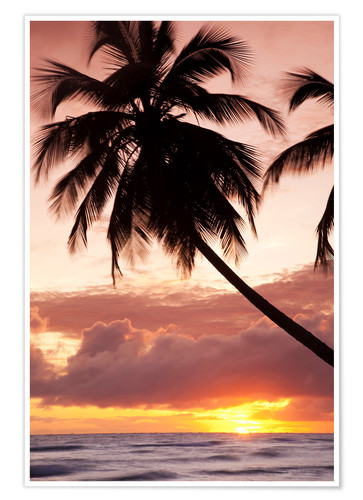 Póster Tropical sunset, Bridgetown, Barbados, West Indies, Caribbean, Central America