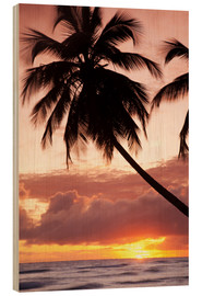 Madera  Tropical sunset, Bridgetown, Barbados, West Indies, Caribbean, Central America - Angelo Cavalli