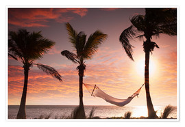 Póster  Hammock on the beach, Florida - Angelo Cavalli
