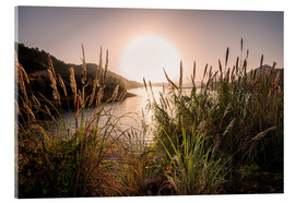 Cuadro de metacrilato  Reeds and setting sun at the shore of Qiandao Lake - Andreas Brandl