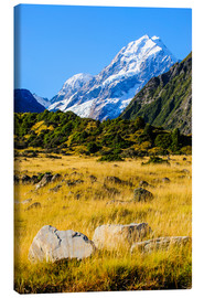 Lienzo  Mount Cook highest mountain in New Zealand, South Island - Michael Runkel