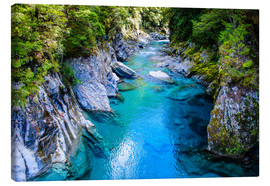 Lienzo  The stunning Blue Pools, Haast Pass, South Island, New Zealand - Michael Runkel