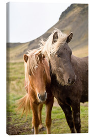 Lienzo  Horses, South Iceland, Northern Europe