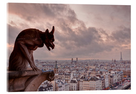 Metacrilato  A gargoyle on Notre Dame de Paris cathedral looks over the city, Paris, France, Europe - Julian Elliott