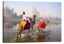 Lienzo  Camel riders at the Taj Mahal - Gavin Hellier