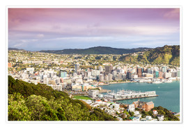 Póster Wellington in the morning, New Zealand