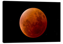 Lienzo  Blood Moon September 2015 - MonarchC