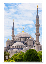 Póster Blue Mosque Istanbul