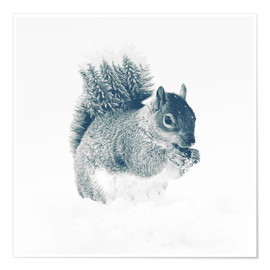 Póster  squirrel - Peg Essert