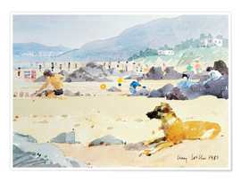 Póster Dog on the Beach, Woolacombe