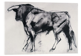 Metacrilato  Bull - Mark Adlington