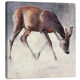 Lienzo  Jung deer in winter - Mark Adlington