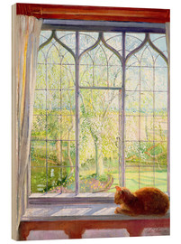 Madera  Cat in window in spring - Timothy Easton
