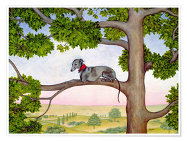 Póster Whippet on the tree