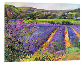 Cuadro de metacrilato  Lavender field - Timothy Easton